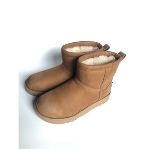Classic Chestnut Waterproof Ugg Boots